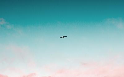 Disruption  🚀 💫 👌 #38
